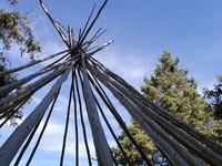 Visite guidée du Jardin des Premières-Nations