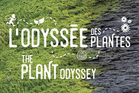 L'Odyssée des plantes