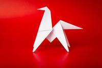 Atelier d'origami