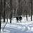 Club de ski de fond des Amis de la montagne - Séances pour adultes