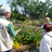 Visites guidées des jardins extérieurs
